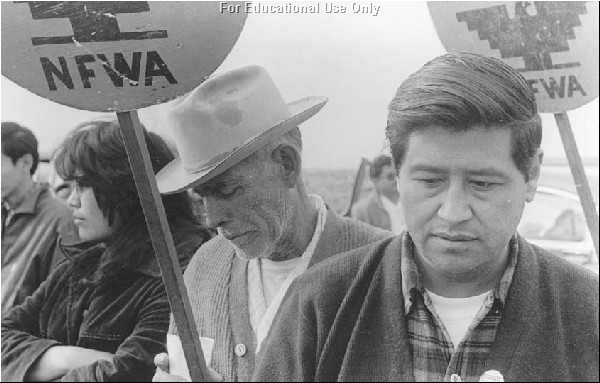 cesar chavez quotes en espanol  quotesgram